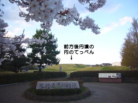 前方後円墳の桜1.jpg